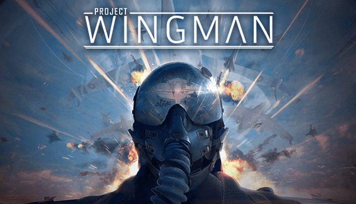 Project Wingman (Region Free) PC